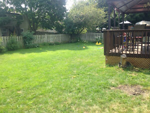 Busy Bee's Childcare - Home Daycare - Spaces Available! Cambridge Kitchener Area image 6