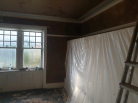 Polish Plasterer, good, cheap and clean!!