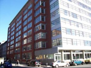 Condo/Loft Vieux Montreal, Condo/Loft for rent Old Montreal