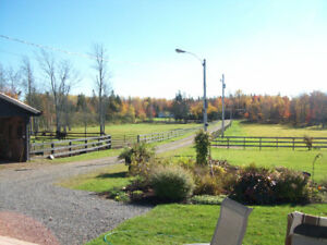 HORSE BOARDING AVAILABLE NEAR PORT ELGIN AND AMHERST