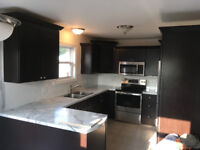 Kitchen Cabinet Replacement/ Kitchen Renovations