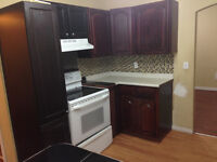 3 Bedrooms for rent near Downtown
