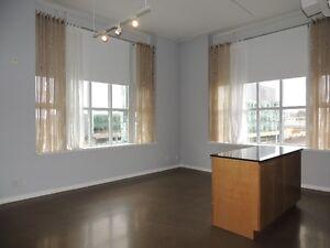 2 Bedroom Condo in Historic Kaufman Loft Building Kitchener / Waterloo Kitchener Area image 4