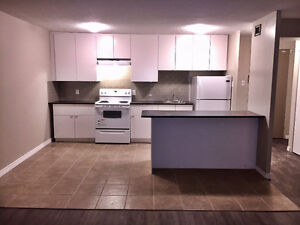 SPRING SP! 2 Bdrm View Suite + Balcony Downtown ALL UTILITIES