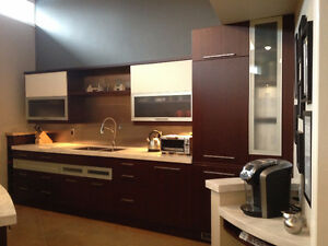 Kitchen from our Showroom Display for sale (cabinets and more)