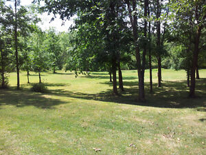 Affordable Country Living! Mobile Home in Seaforth for sale Kitchener / Waterloo Kitchener Area image 8