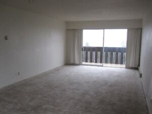 Bright and spacious one bedroom apartment