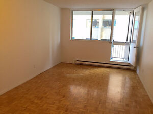 Sublet or long term lease of 1 1/2 at south end of Plateau