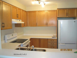 $1800 -1100+sq.ft 2 Bedroom and 2 full Bathroom, available Sep 1