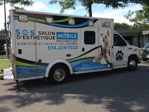 Salon d'esthétique mobile à domicile pour chien et chats