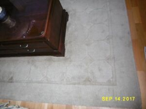 Reduced Pure Wool Rug like new condition...  Moving soon