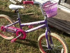 20 inches girl bike with a basket For sale