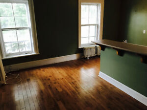 SPACIOUS 1 BDRM DOWNTOWN APT FURNISHED OR UNFURNISHED JAN 1