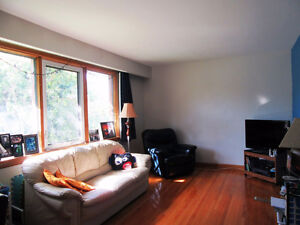 For Rent by Owner: Clean 1 Bdrm Apt.-  Available Sept 1/16
