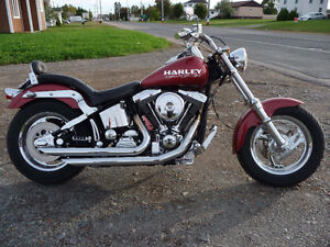 One of a kind 2004 HARLEY-DAVIDSON softail