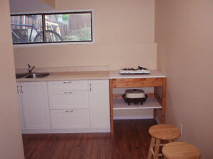 1 Bdrm Suite for Rent - Armstrong