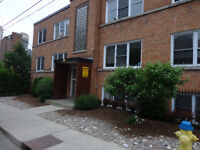 large 3 bed apt near ottawa university sandy hill sept 1st