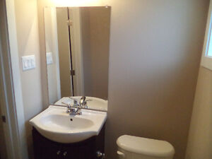 Be the first person to live here, just renovated 3 bedroom