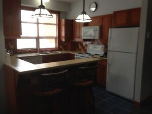 CONDO FOR RENT IN MONT TREMBLANT Gatineau Ottawa / Gatineau Area image 10