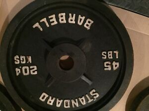Standard Olympic Weights $375