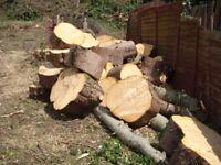 Raw Wood / Firewood - Free