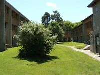 Gorgeous 1-brm apt on Rotary Trail for Sept 1, utilities incl!