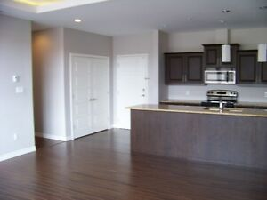 Luxury 2 Bdrm+2 Baths,1200 sq ft, All Appliances,Heated July 1st