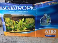 Fish tank 110 liters capacity . Filter n other stuff needed to setup tank included