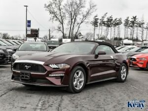 2018 Ford Mustang EcoBoost Fastback  - Bluetooth - $112.35 /Wk