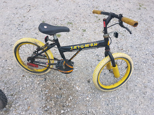Bike for a boy and a bike for a girl. Designed 5-8 years old kid