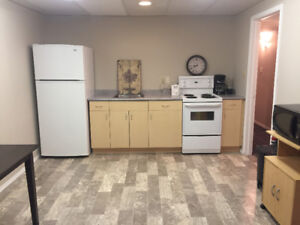 1 Bedroom Fully Furnished basement suite available immediately