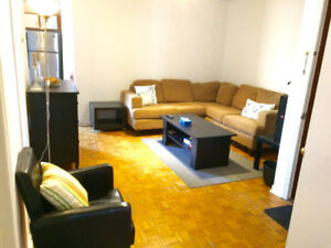 Furnished Bright / Spacious 3 bedroom in McGill Ghetto/WiFi