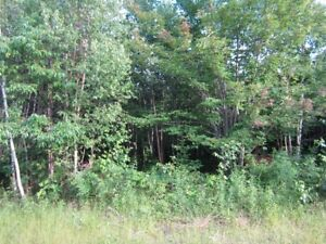 100 acres in great deer hunting country