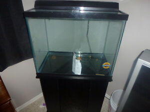 56 gallon tall fish tank trade 4 stingrays