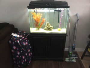 Fish tank and stand and all that comes with it