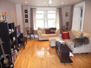 Huge semi-furnished 4 1/2 - Lease Transfer Feb to July - Atwater