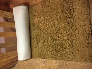 2 new area rugs