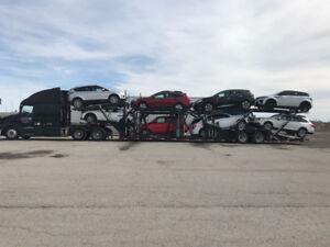 Vehicle Shipping Canada Wide Adesa, Manheim, Impact, Copart
