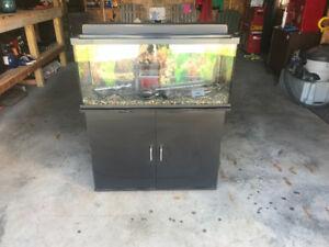 30gal fish tank and accessories