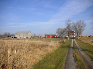 95 Acre Farm for Sale