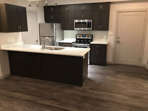 New Windermere Apartment for RENT!