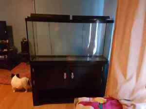 60 gallon aquarium with black wood stand for sale