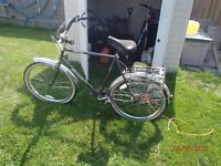 Ross Shark Adult 3 speed cruising bike