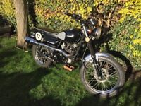 Sinnis scrambler 125 perfect first bike