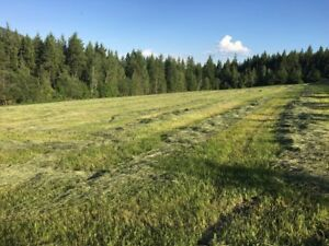 Field for use - Salmon Arm