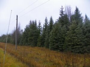 Amazing Vacant Land Now Available At Less Than $299 An Acre !