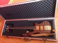 5 string bass Washburn T-25