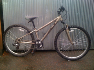 Norco pinnacle 12.5""
