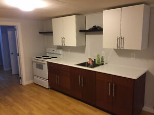 Newly renovated suite in Highwood, great location close schools