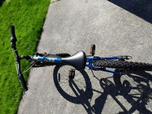Boy bike 20' size, occasionally used
